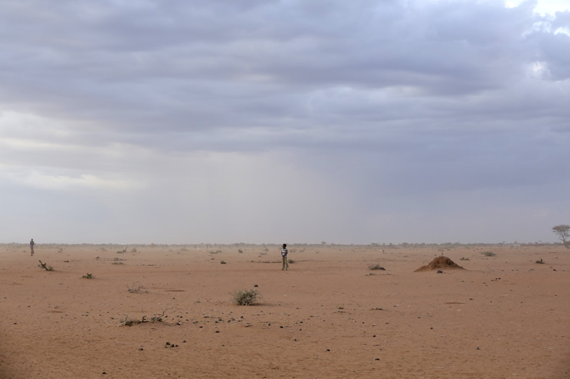 Desertification Is Not Far It Is Already Here