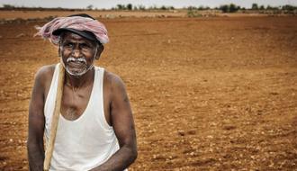 Desarrollo de la horticultura a través de sistemas de riego por goteo en India