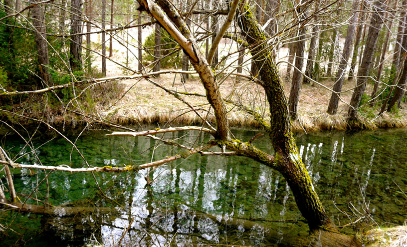 Reutilización agua interior