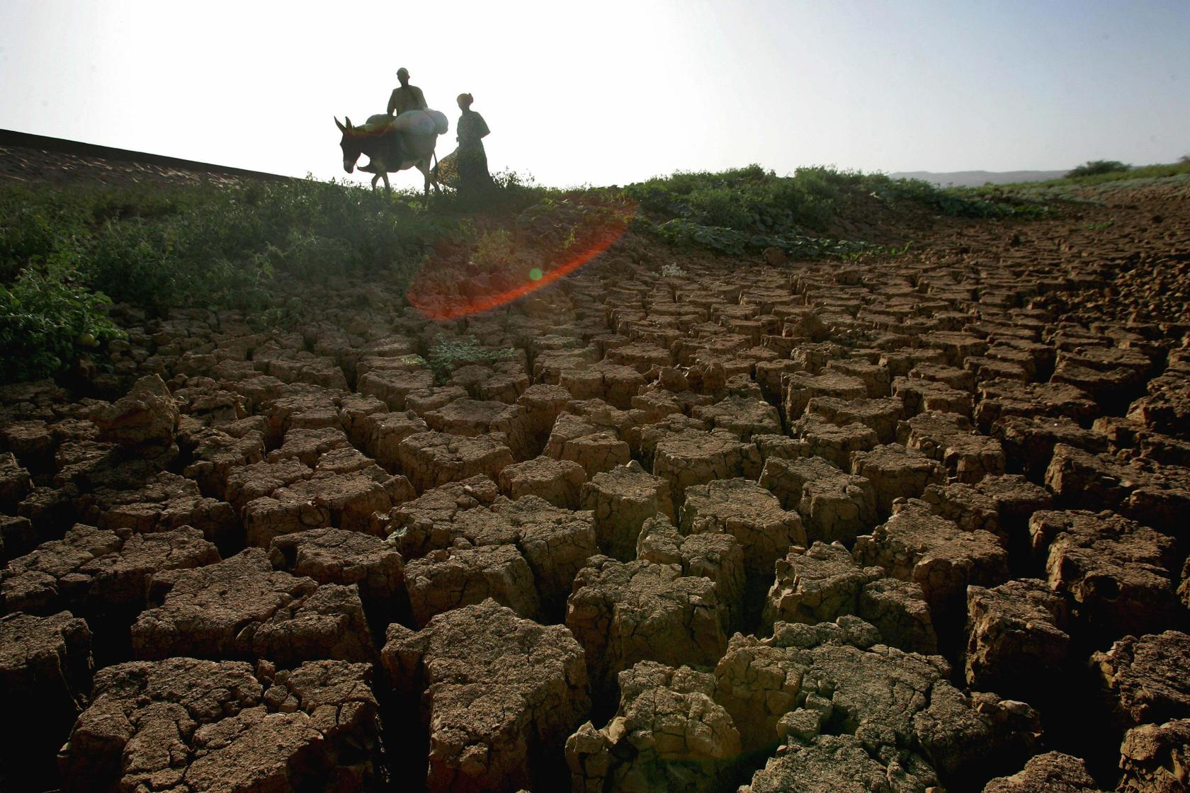 Niger. África ©FAO/Giulio Napolitano