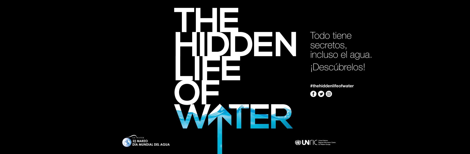 The Hidden Life of Water - Banner ES