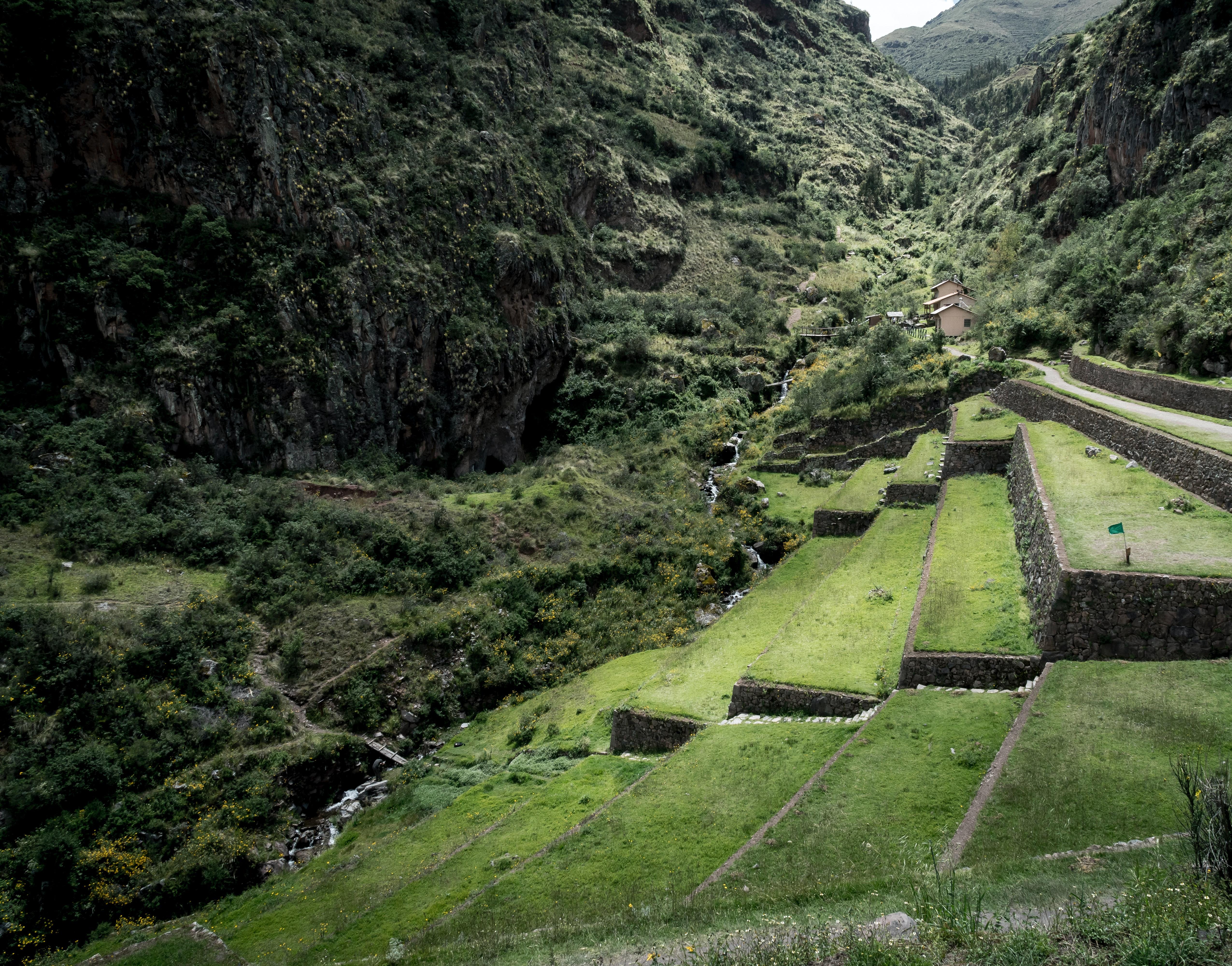 agriculture terraces