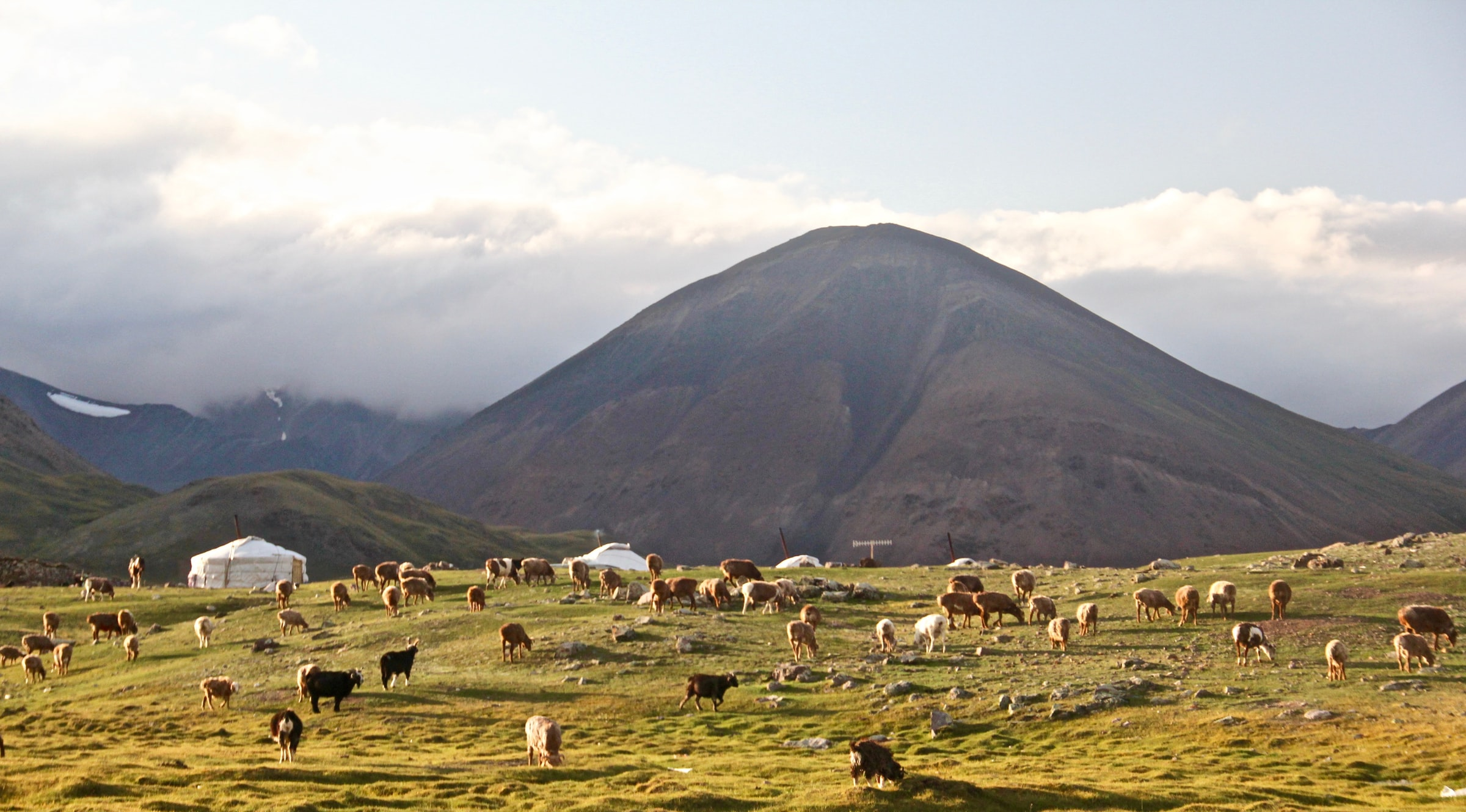 Pastoreo Nómada Mongolia