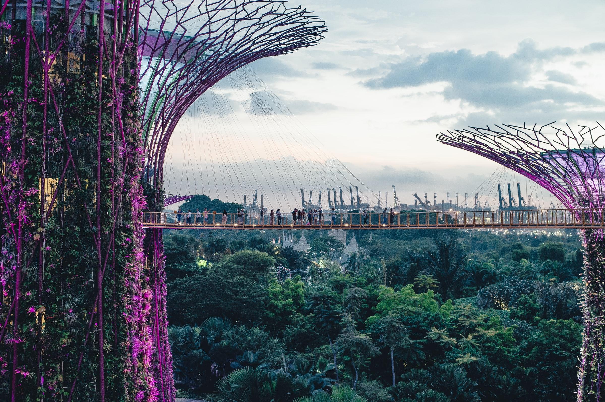 ciudad con árboles