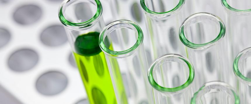 microalgae ppal