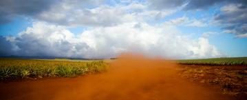 polvo del desierto ppal